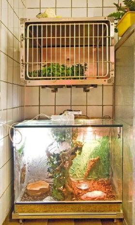 Tierstation für Exoten